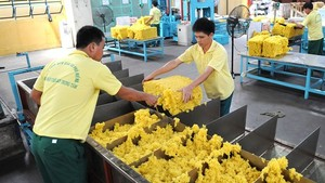 Rubber is one of the major export items of Vietnam to China (Photo: SGGP)