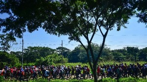 Honduran migrants march as Trump vows 'full efforts' to halt them