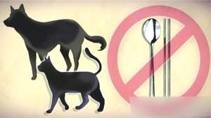 韓青瓦台關注禁食狗肉請願