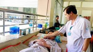 One Vietnamese adult dies of dengue