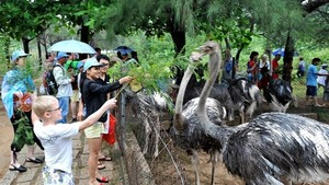 Tourists visit Hon Nhi island, Nha Trang (Source: VNA)