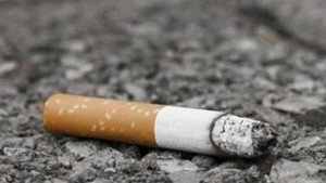 Resident to face fine for littering streets with cigarette butts