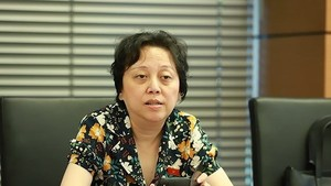 Head of the Ho Chi Minh City's Food Safety Management Board Pham Khanh Phong Lan  (Photo: SGGP)