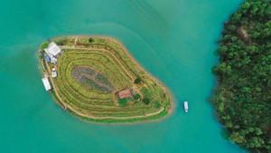 從高處俯瞰的山谷湖花島。