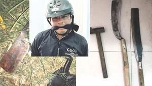 阮黃南被拘捕(小圖)及歹徒行兇的兇器。(圖源:互聯網)
