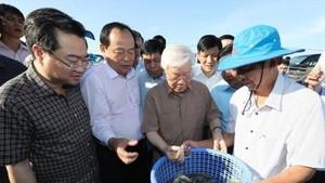 總書記、國家主席阮富仲瞭解水產加工過程。(圖源:越通社)