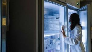 市衛生廳工作團將於本月15日至7月10日進行檢查市內預防和治療方面的疫苗及醫療生物製品的經營、保管及使用事宜計劃。(示意圖源:互聯網)