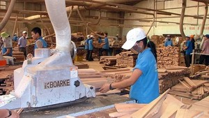 Wood processing is one of key export industries of Vietnam. (Photo: SGGP)