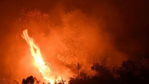Forest fire in Riau province of Indonesia (Photo: AFP)