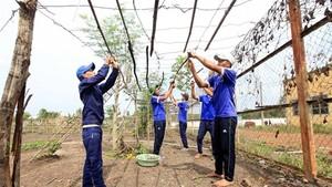 A drug rehabilitation activity in southern Binh Phuoc province. (Photo: VNA)