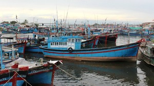Fishing vessels dock on the Dong Hai port in Phan Rang City (Photo: Minh Tran