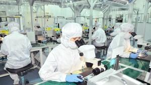 An FDI firm in Tan Thuan Export Processing Zone, HCMC (Illustrative photo: SGGP)