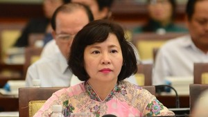 Ho Thi Kim Thoa was dismissed from her position as Deputy Minister of Industry and Trade under a decision issued by the Prime Minister on August 16. (Photo: tuoitre.vn)