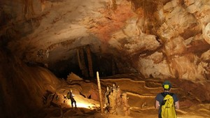 Phong Nha-Ke Bang national park has discovered 58 new caves (file photo)