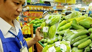 Bitter melon meeting VietGap quality standards are sold in a supermarket (Photo: SGGP)