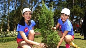 """2015年越南環宇小姐參加大勒""""第一宮""""的植樹活動。(示意圖源:輝方)"""