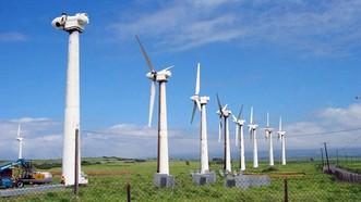"""Thu hút đầu tư """"nóng"""" vào điện gió"""