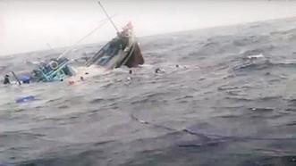 Sau khi đâm chìm tàu cá của ngư dân, tàu vận tải Hải Dương 19 bỏ chạy.(Ảnh minh họa)