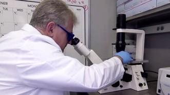 Hiện vẫn chưa có phác đồ điều trị thích hợp cho các bệnh nhân mắc căn bệnh này. Ảnh: ABCNews.com