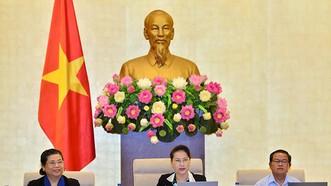 Chủ tịch Quốc hội Nguyễn Thị Kim Ngân: Phải đấu thầu công khai giao đất