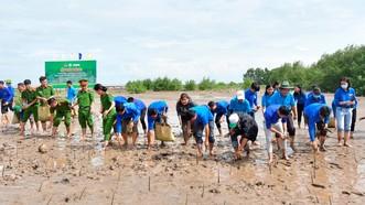 Lực lượng đoàn viên tham gia trồng rừng ngập mặn