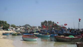 Quảng Ngãi: 23 tàu cá không được đăng kiểm, ngư dân cần hỗ trợ