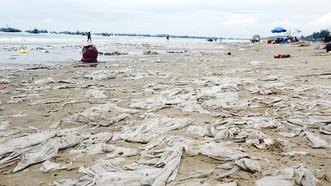 Bãi biển Mũi Né ô nhiễm nghiêm trọng