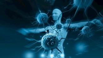 新研究:量化免疫「年齡」可預測死亡風險。(示意圖源:互聯網)