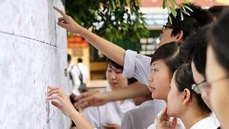 應屆高中畢業生查詢高考成績。(圖源:VTV)