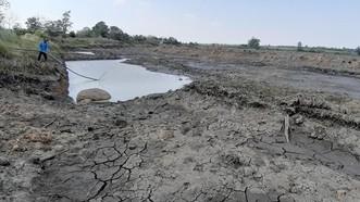 113.000 hộ khát nước vì hạn hán, Bộ trưởng Bộ NN-PTNT báo cáo Thủ tướng