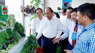 Thủ tướng Nguyễn Xuân Phúc và các đại biểu tham quan khu vực trưng bày sản phẩm đặc trưng của vùng đồng bằng Bắc bộ. Ảnh: TTXVN