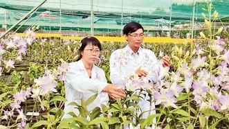 Nghiên cứu thành công nhiều giống rau, hoa, vaccine mới