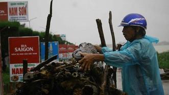 民眾在洪澇中撈起大量木材。
