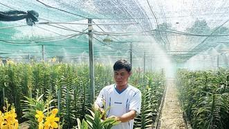 Nhờ mô hình tưới nước tự động, nông dân Tô Tấn Thành có thời gian nhàn rỗi để chăm sóc hoa
