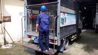 工作隊有專用車,車上有狗籠,車身兩邊有宣傳看板,工作人員身穿 背後印有市獸醫分局動物防疫和檢疫站字樣的深藍色制服。