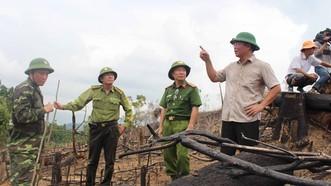 Phó Chủ tịch UBND tỉnh Quảng Nam (bìa phải) đi kiểm tra hiện trường vụ phá rừng phòng hộ
