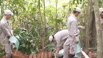 Đội rà phá bom mìn lưu động xử lý thành công hầm đạn pháo