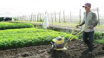 本市鼓勵農民、自由業者參加自願性社保以領退休金。