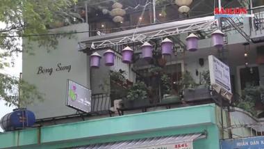 Nhà hàng Bông Súng: Tinh tuý ẩm thực chay