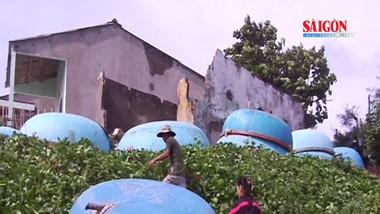 Quảng Ngãi: Người dân làng chài Lệ Thủy thấp thỏm trong mùa mưa bão