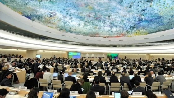 A meeting of the UN Human Rights Council (Source: The Algemeiner)