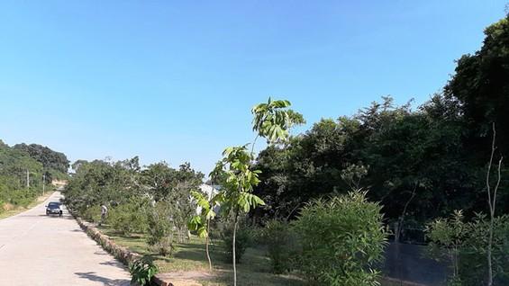 Phần đất của gia đình bà Yên khai khẩn năm 1981, nay nằm trong dự án khu du lịch, nhưng không được bồi thường