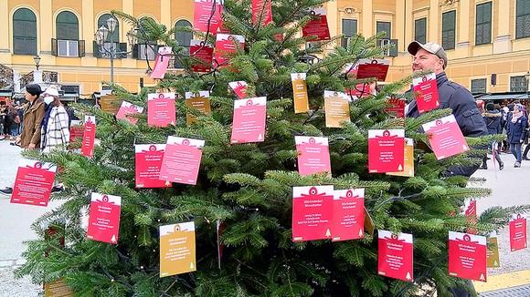 Cây ước nguyện cho trẻ em Làng SOS trong  chợ Giáng sinh tại cung điện Schonbrunn, Áo