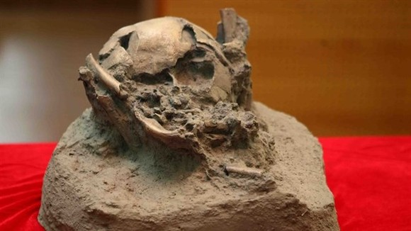 A copy of the remains of a young boy found in a volcanic cave. (Source: VNA)