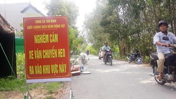 Toàn tỉnh Đồng Nai chung tay phòng chống dịch