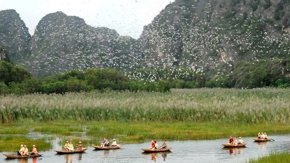Scene at the Van Long Wetland Nature Reserve (Photo: sodulich.ninhbinh.gov.vn)