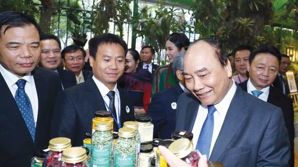 Thủ tướng Nguyễn Xuân Phúc và các đại biểu tham quan triển lãm.  Ảnh: TTXVN