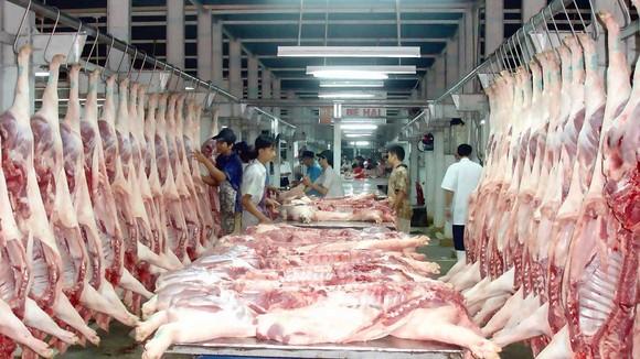 Kiểm soát chất lượng thịt heo ngay tại các chợ đầu mối