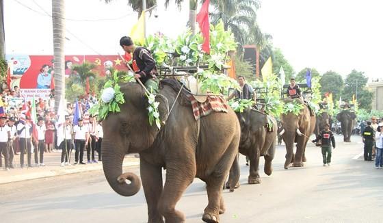 Elephants in street festival