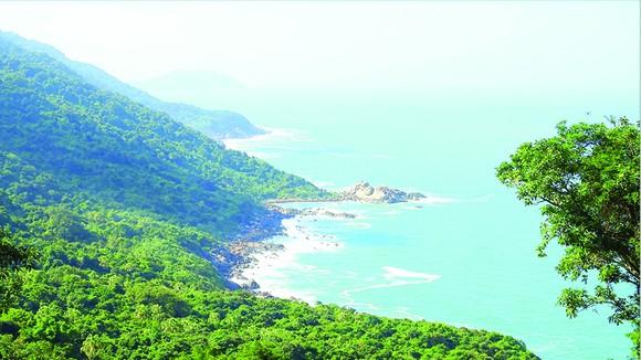 Một góc phía Bắc bán đảo Sơn Trà